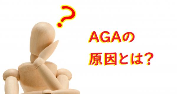 AGAによる薄毛の原因とは? 【ヘアサイクルの異常】