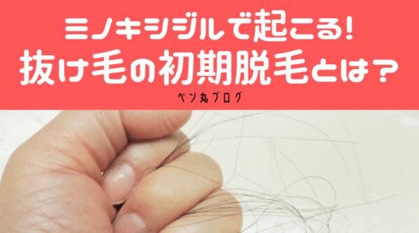 AGA治療のミノキシジルで起こる、抜け毛の怖い初期脱毛という副作用とは?