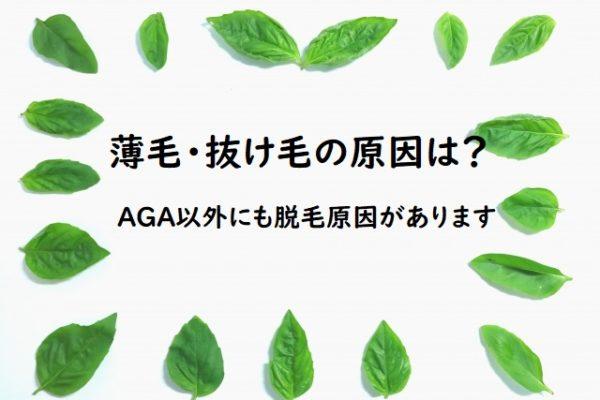 AGAヘアクリニックの遠隔診療について