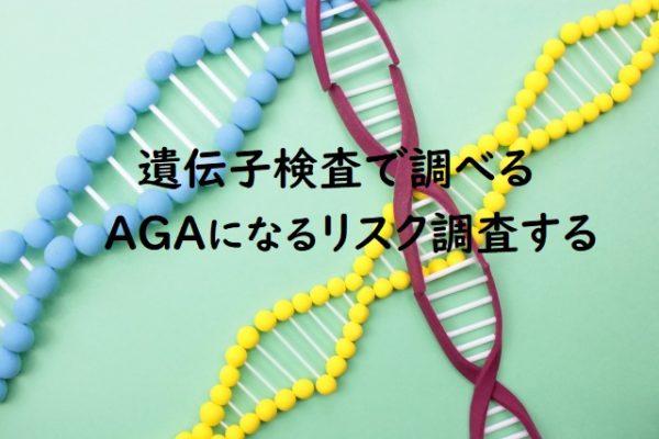 男性型脱毛症のAGAを遺伝子検査で分かることは2つ!
